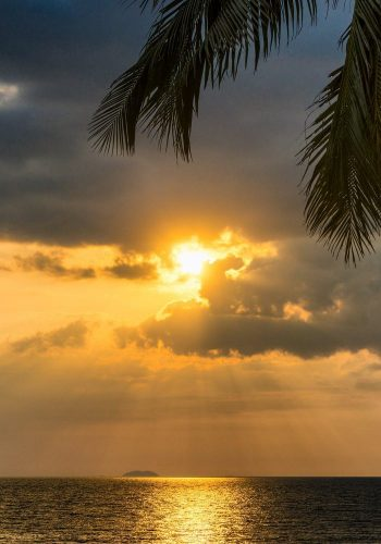 sun 2